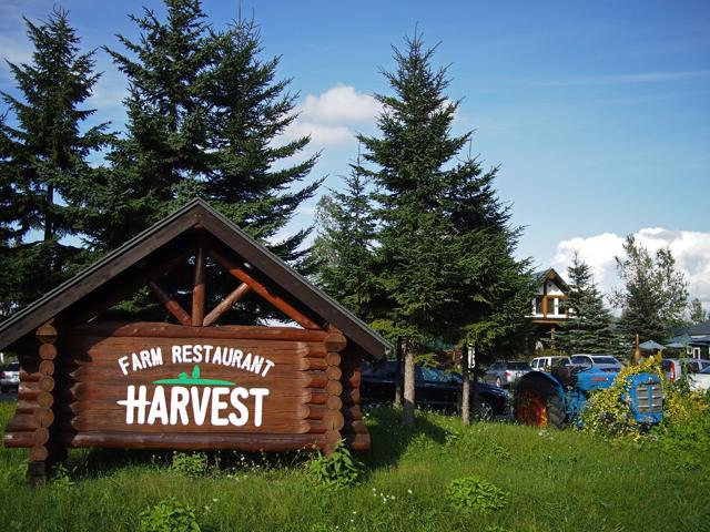 harvest_02t.jpg