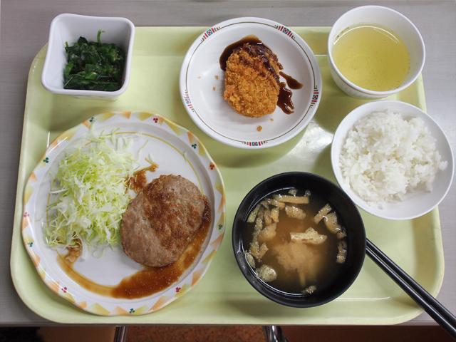hokkaido_university2_08t.jpg