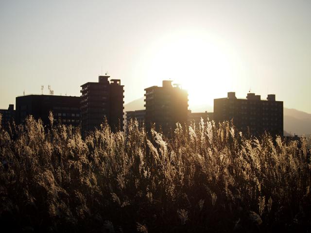 hokkaido_university2_09t.jpg