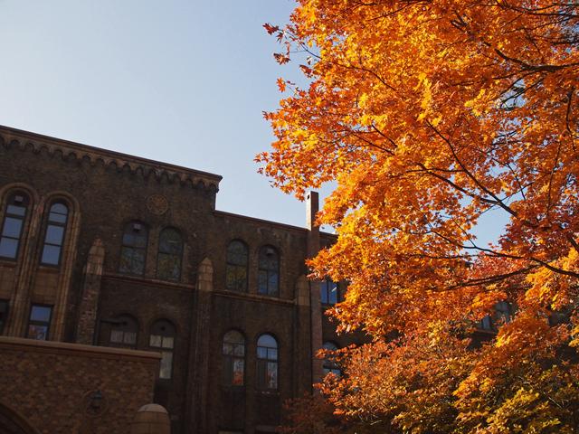 hokkaido_university2_10t.jpg