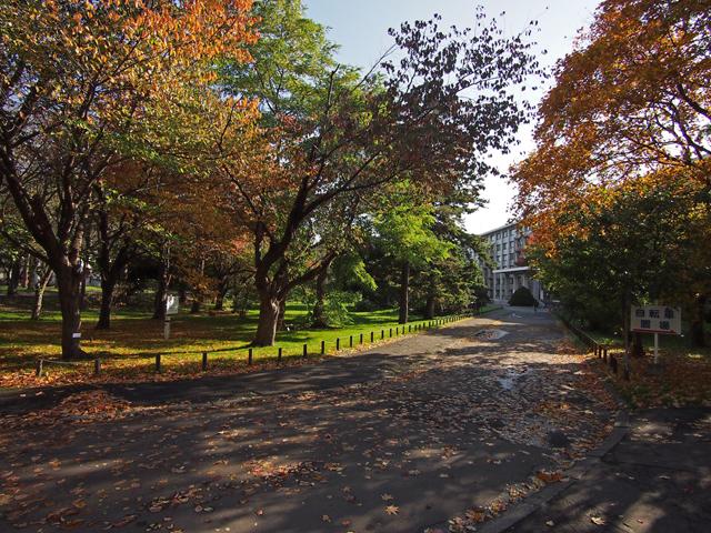 hokkaido_university_03t.jpg