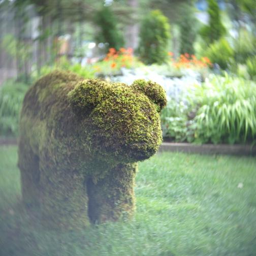 真夏の円山動物園