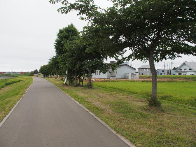 モエレ沼公園外堀遊歩道