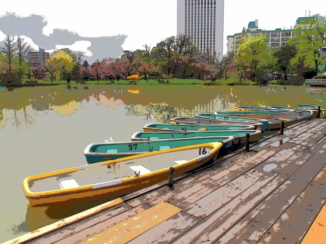 中島公園の桜と菖蒲池