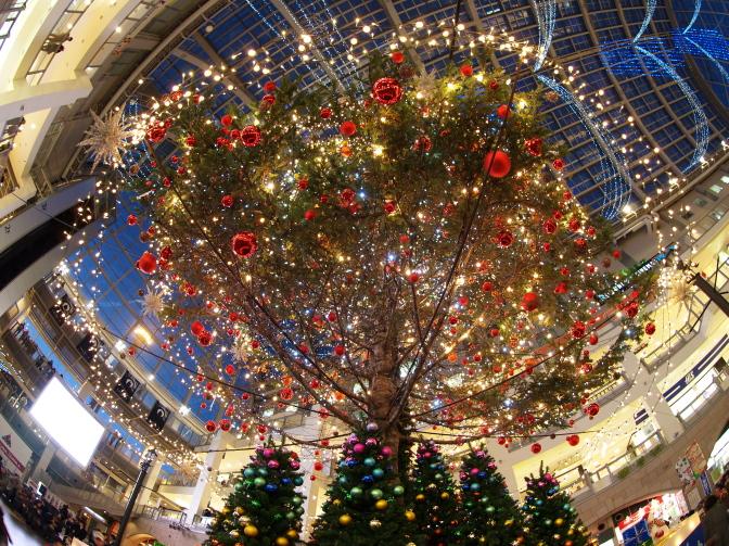 サッポロファクトリーのクリスマスイルミネーション