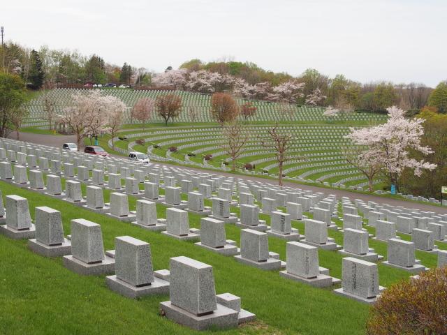 戸田記念墓地公園の桜
