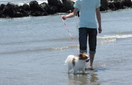 海へ 04 2012.5.5