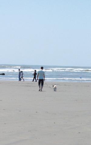 海へ 02 2012.5.5