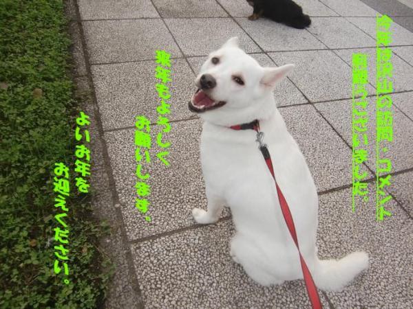 003_convert_20100815230405_convert_20101230084150.jpg