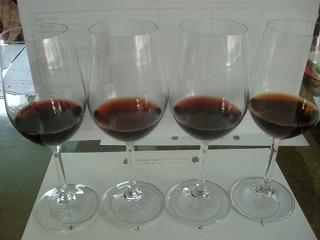 vino rosso 003