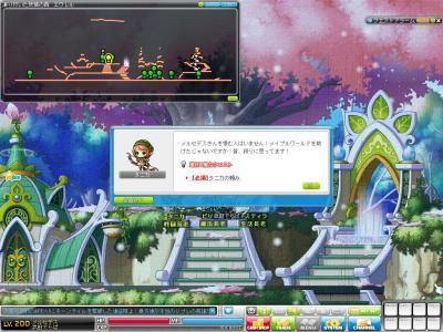 Maple120304_130146.jpg