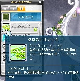 Maple120304_225903.jpg