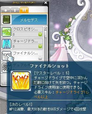 Maple120304_225909.jpg