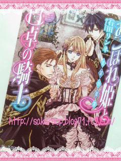 おこぼれ姫と円卓の騎士 将軍の憂鬱