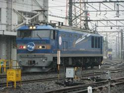 D206.jpg