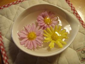 お花のおみやげ