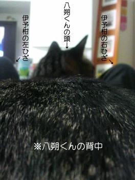 100218_1.jpg