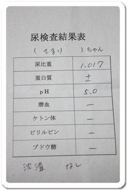 sakuてま 106787
