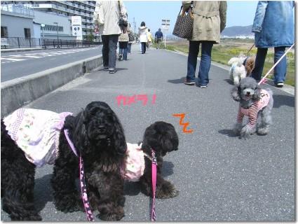 お散歩会 040