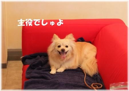 お誕生日会 010