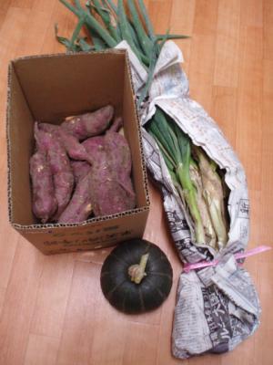 20110910手作り野菜