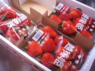 20120324大江山の越後姫