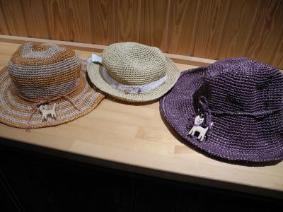201208猫帽子