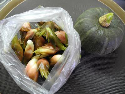 201209野菜いろいろ