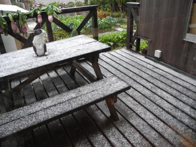 20121201初雪