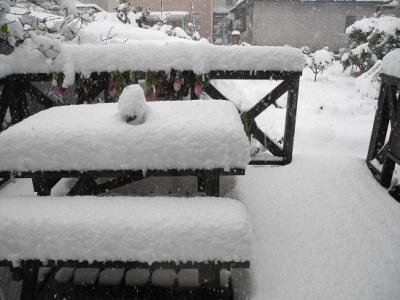 20121209一夜にして大雪