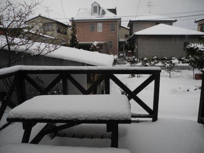 20130220積雪