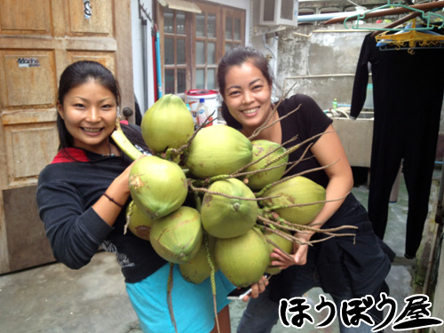coconut_20120116180011.jpg