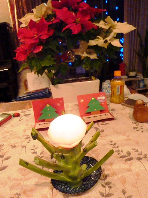 2011年 12月,クリスマス, 050