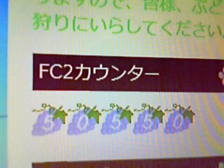 201210250951000.jpg