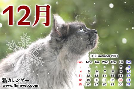 2011_12_cal.jpg