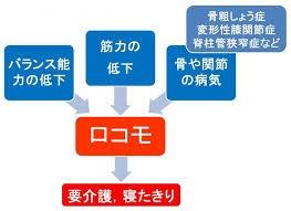 imagesCAJIIV8N.jpg