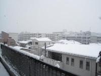 生協本部からの雪景色