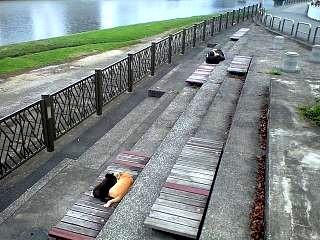 20120721沼津散歩(その7)