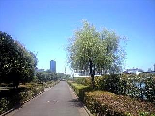 0710芝浦港南中央公園(その2)