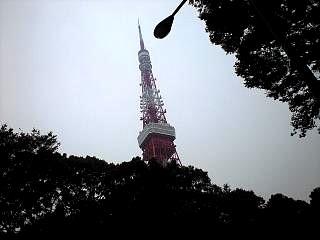 20111105東京タワー(その2)
