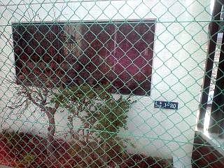 20120320芝浦界隈(その3)