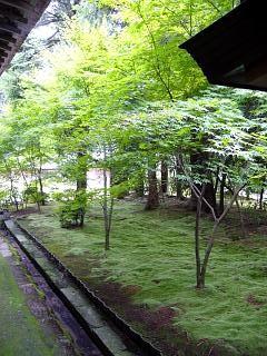 2007竜安寺(その9)