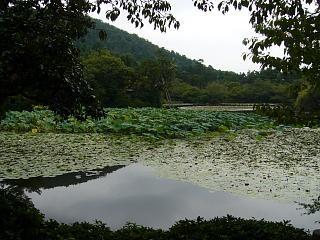 2007竜安寺(その21)