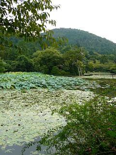 2007竜安寺(その23)