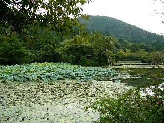 2007竜安寺(その24)