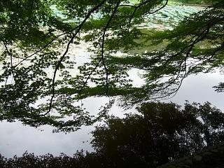 2007竜安寺(その25)