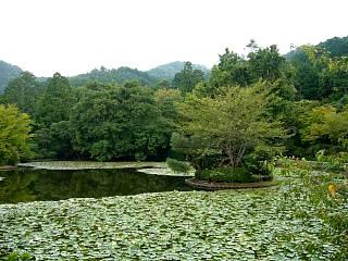 2007竜安寺(その27)