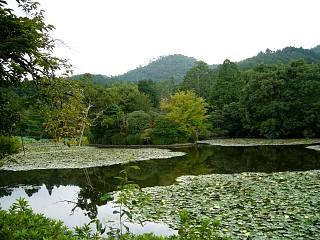 2007竜安寺(その28)