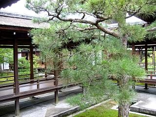 20070927仁和寺(その13)