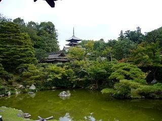 20070927仁和寺(その26)